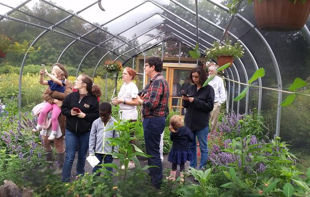 Butterfly Project Volunteer / Educator