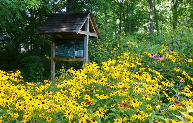 Sharon Audubon Center