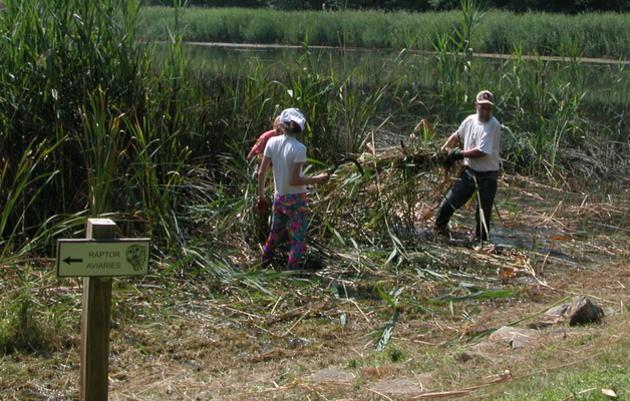 Maintenance-Trail Steward