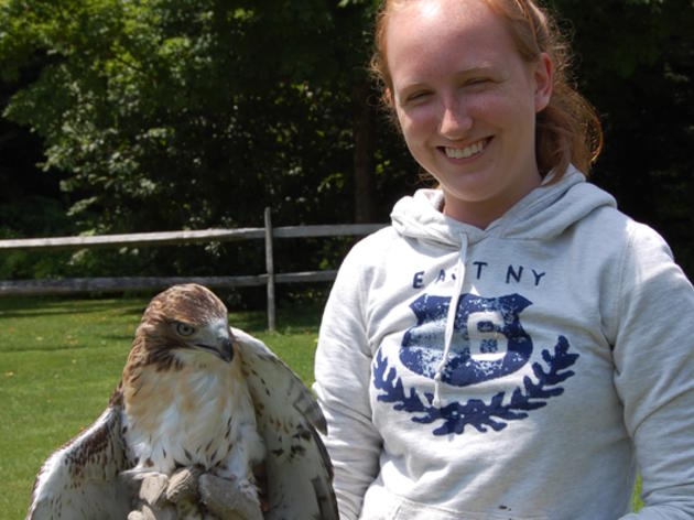 Wildlife Rehabilitation Internships