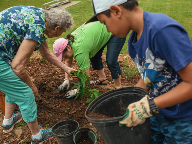 Equity, Diversity, and Inclusion at Audubon