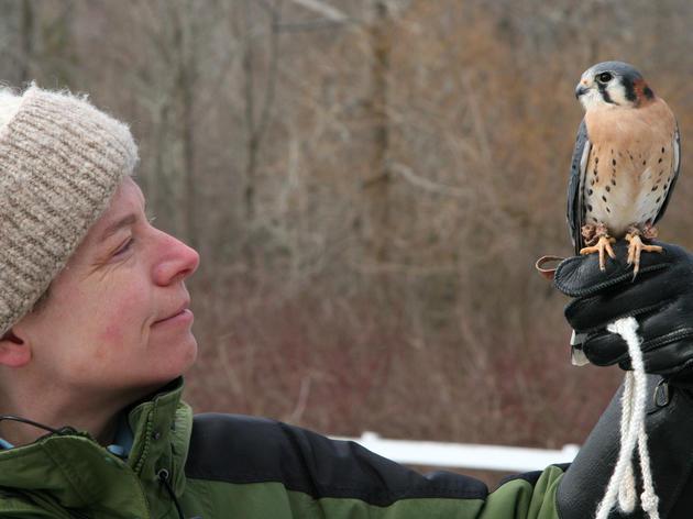 Audubon Sharon Welcomes New Center Director