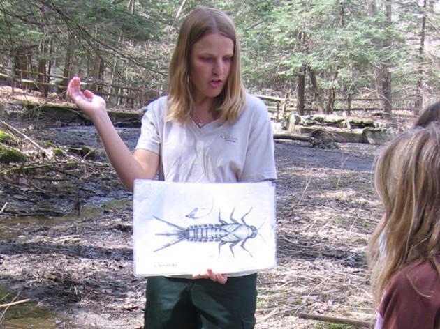 Spring-Summer Environmental Education Internships