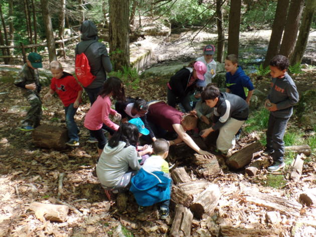 Summer-Fall Environmental Education Internships
