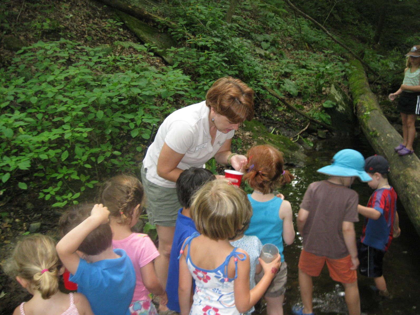 Us Trails In Early Childhood Education >> Meet the 2018 Camp Staff   Audubon Sharon